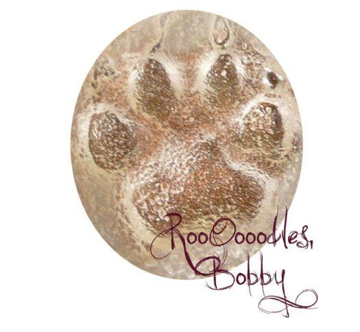roooodles bobby