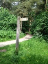 Footpath post ???