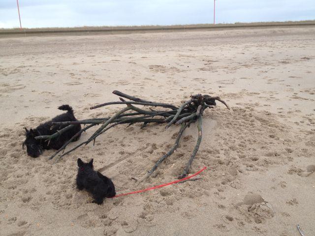 10 Mablethorpe beach with Fabi