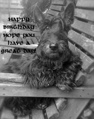 Hppy birthday 2 you! 2