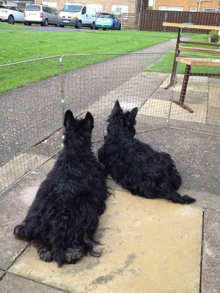 Me and Bob on Guard Duty