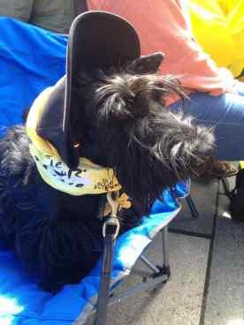 Fabi sporting a cycling cap