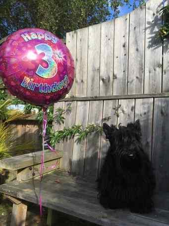 birthday-fabi