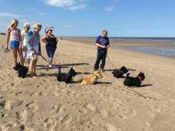 East Coast beach gathering